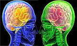 Brains lead to Outbound Marketing