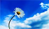 Start sawying to a breeze intentionally