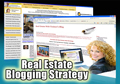 Real estate blogging strategy training internet traffic visibility